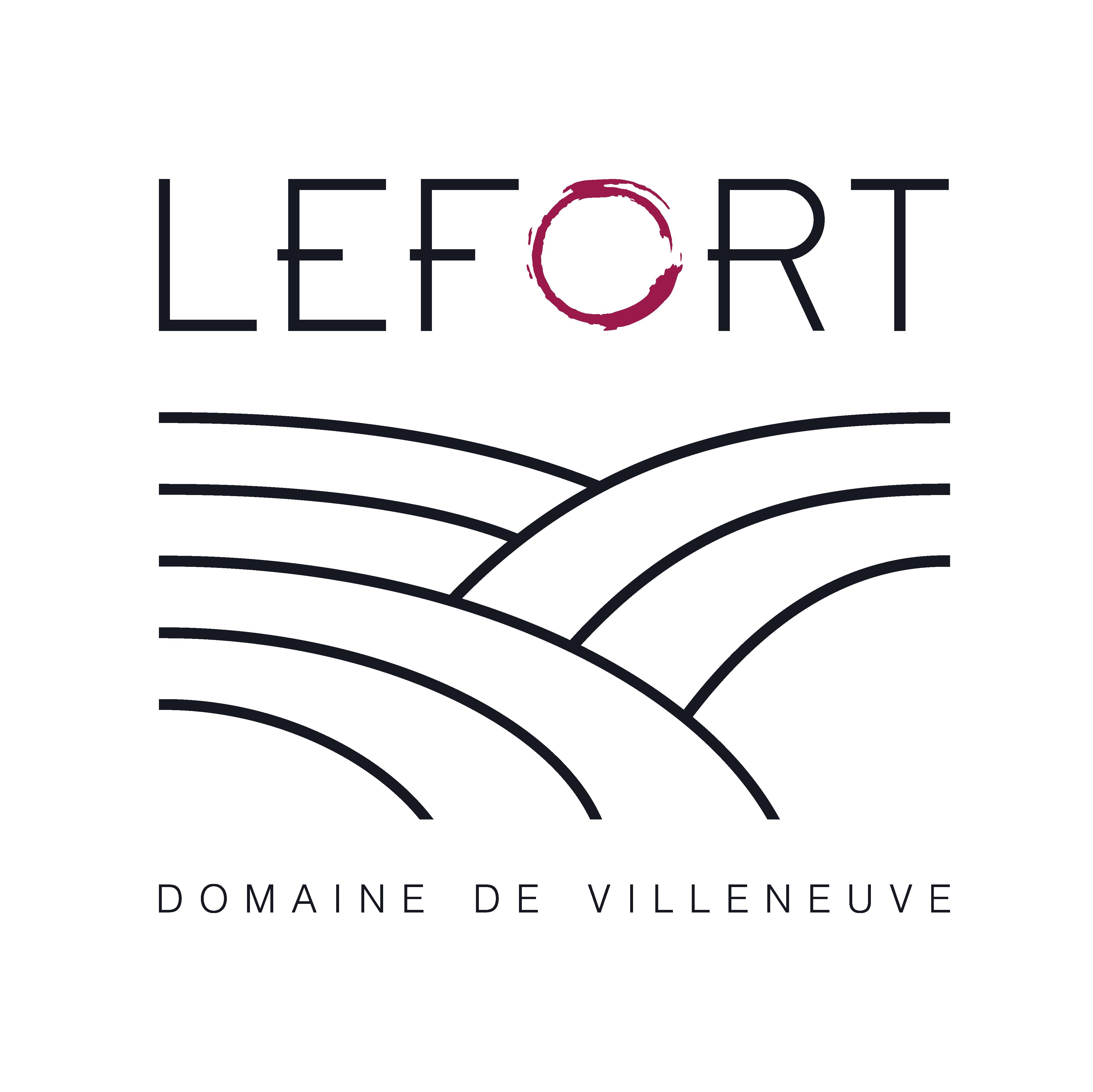 Logo Domaine de Villeneuve